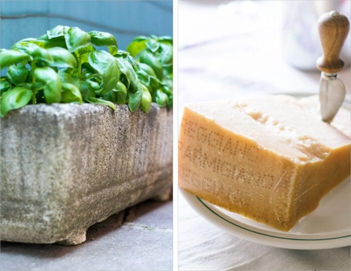Parmigiano-Reggiano and Basil for Tartine Bruschetta