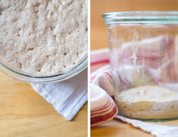 Tartine Sourdough Starter (aka: leaven, levain)