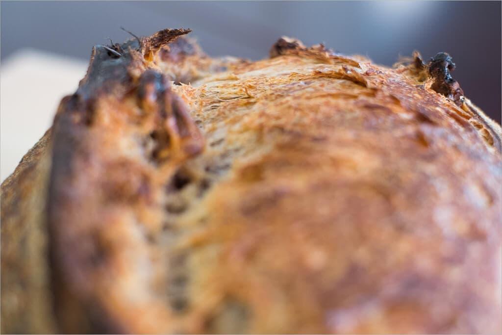 Tartine country walnut sourdough ears