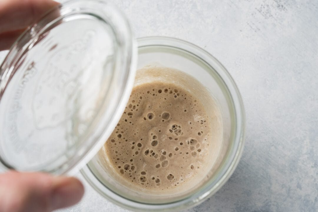 7 Easy Steps to Making an Incredible Sourdough Starter From Scratch via @theperfectloaf