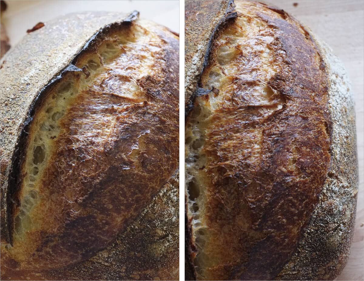 Young Levain