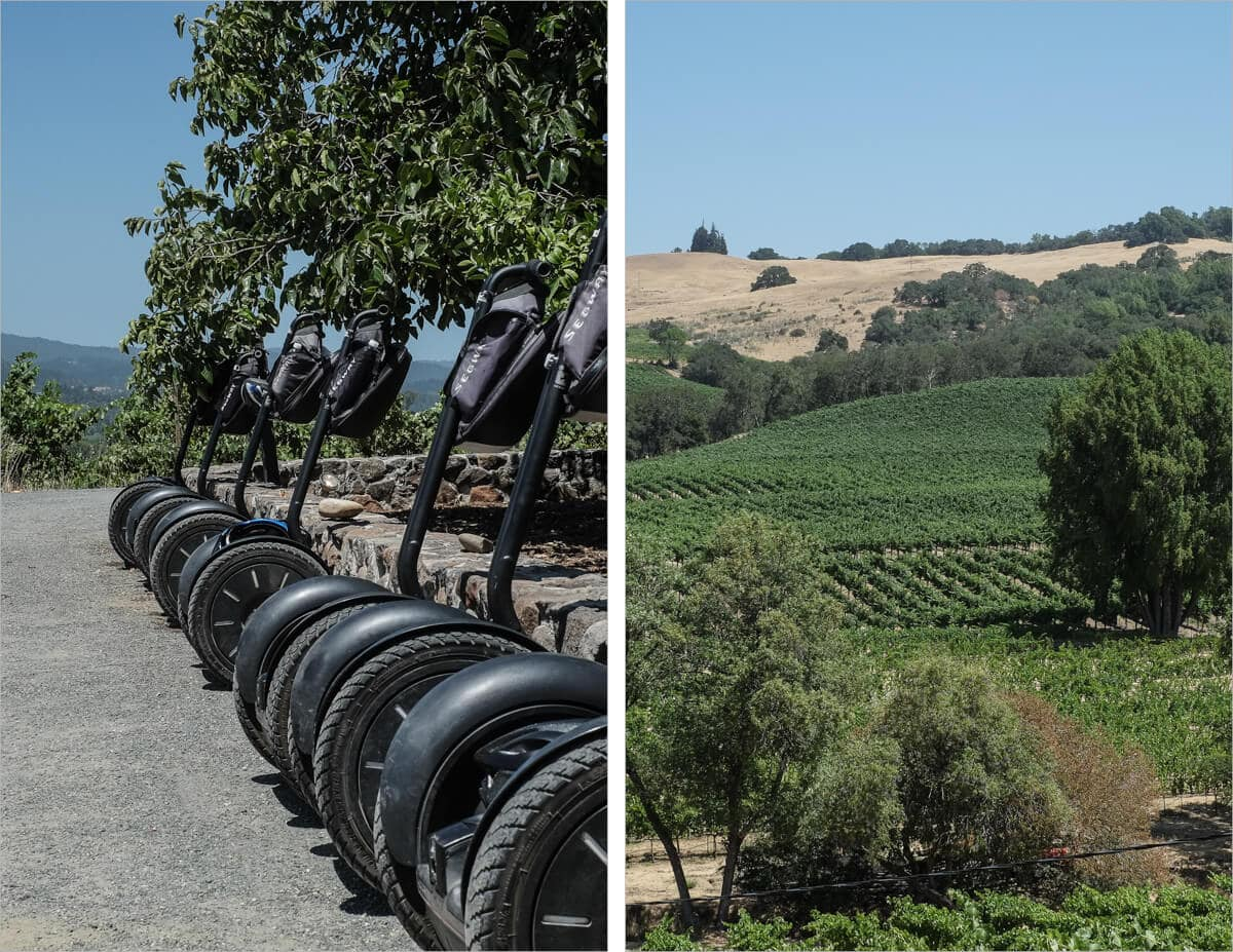 Segway tour of wineries in Healdsburg