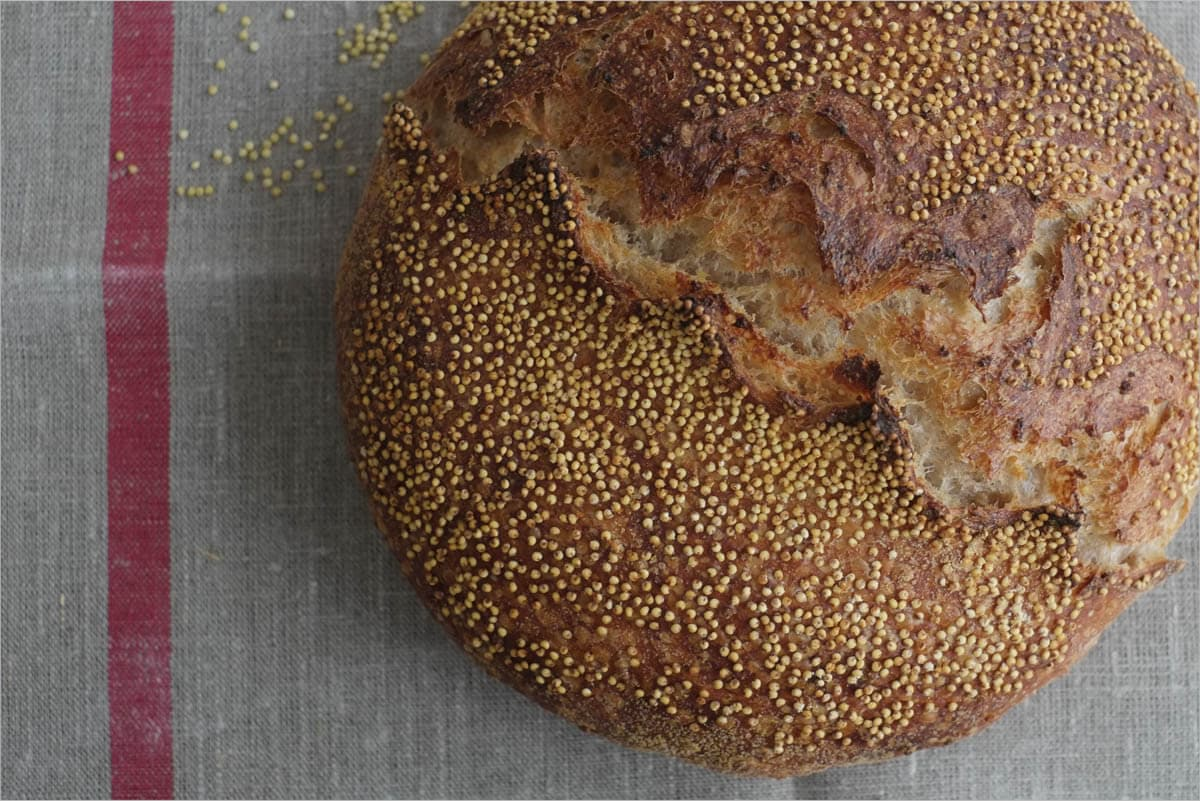 Bread crust topped with whole grain millet
