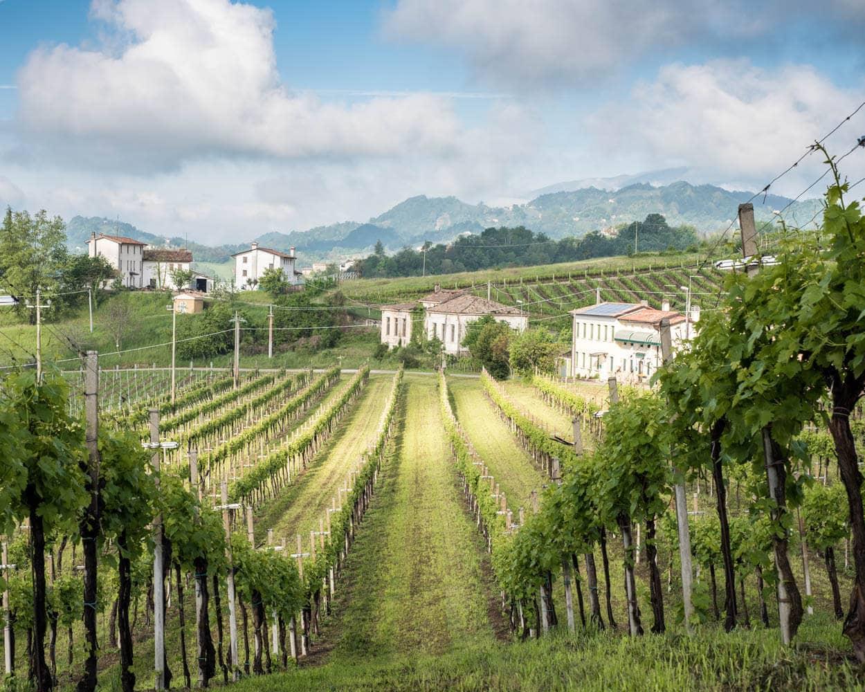 Italy Conegliano