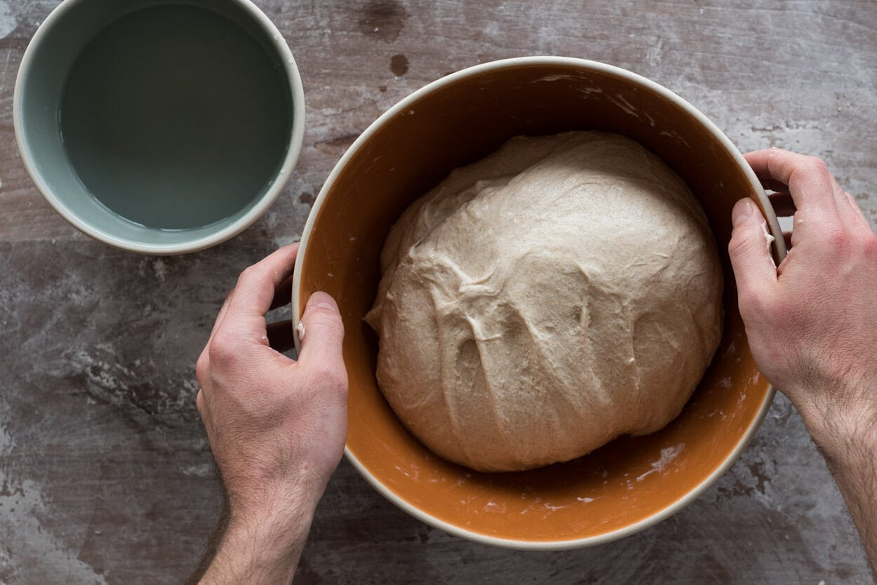 beginners sourdough in bowl