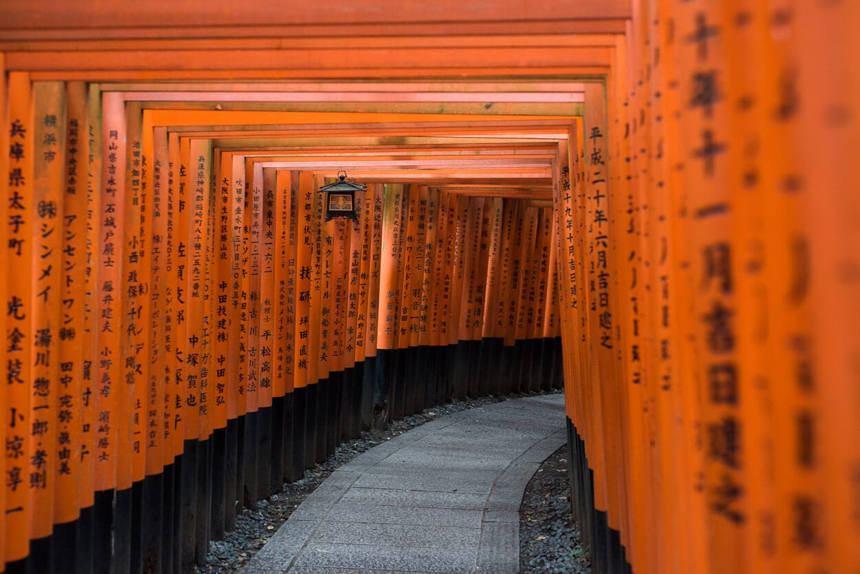 Seeing Fushimi Inari-taisha while traveling Japan