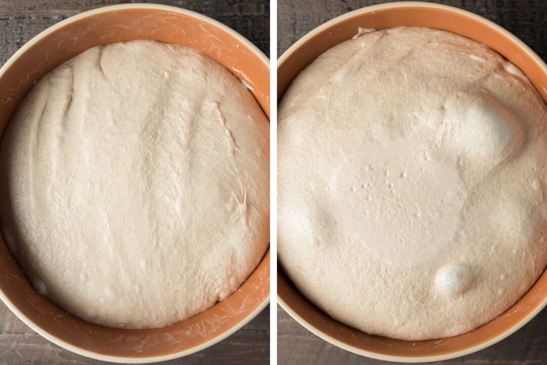 Warm and cold bulk fermented dough
