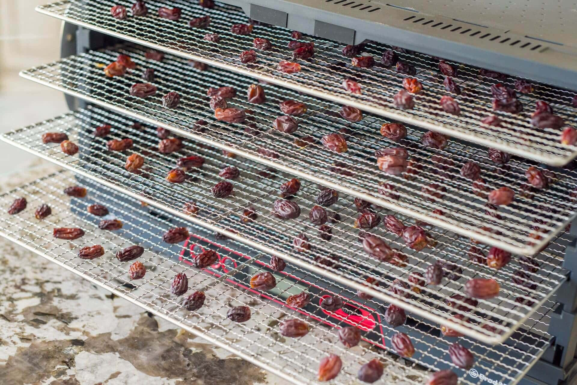 Dehydrated grapes in the B&T Sahara Food Dehydrator via @theperfectloaf
