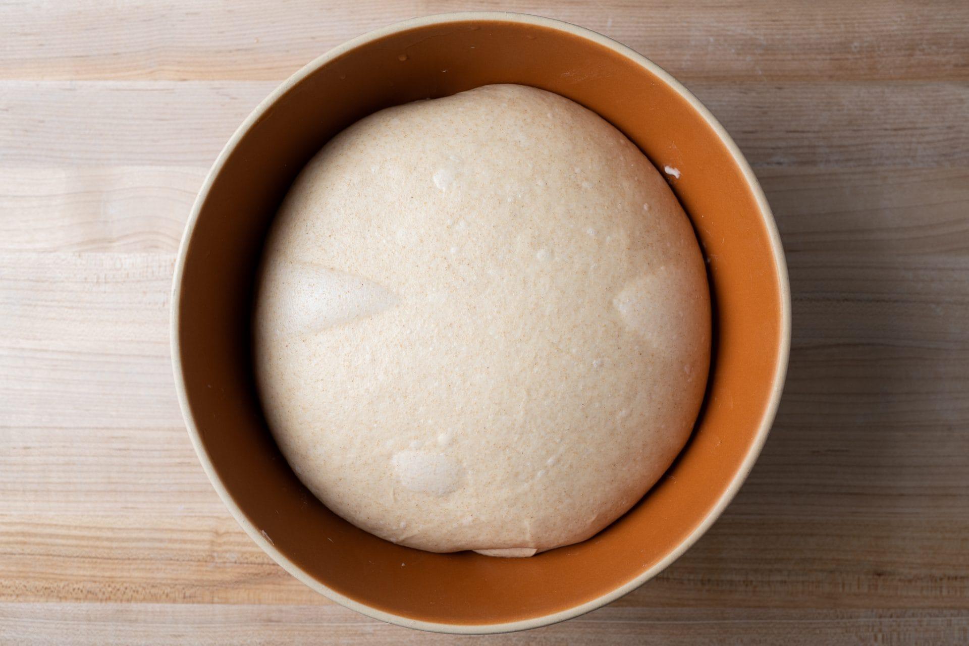 Hot dog bun dough after chilling