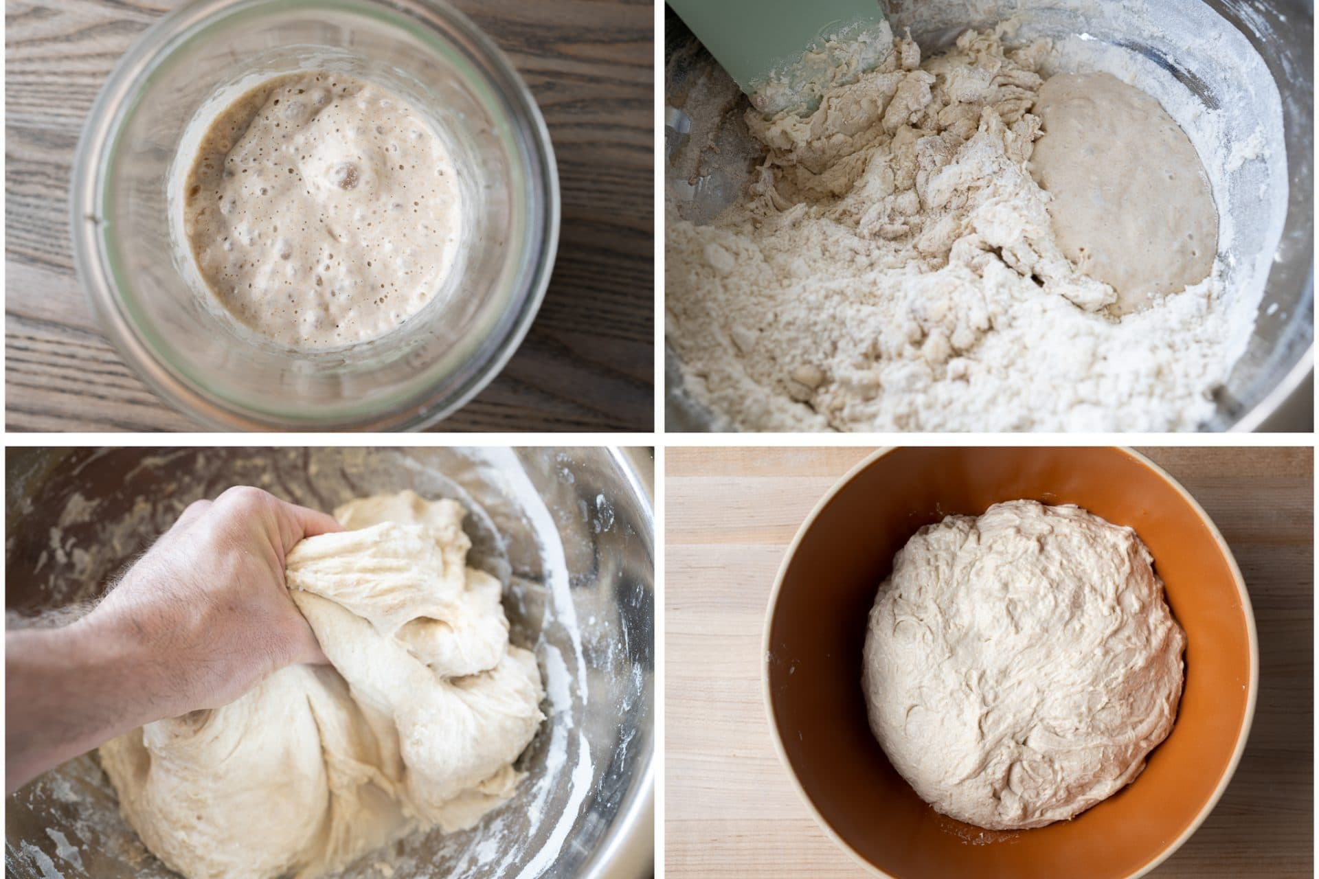 Sourdough starter and mixing